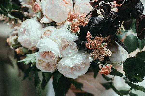 csm_Primavera_Flora__214__bc0b65e692
